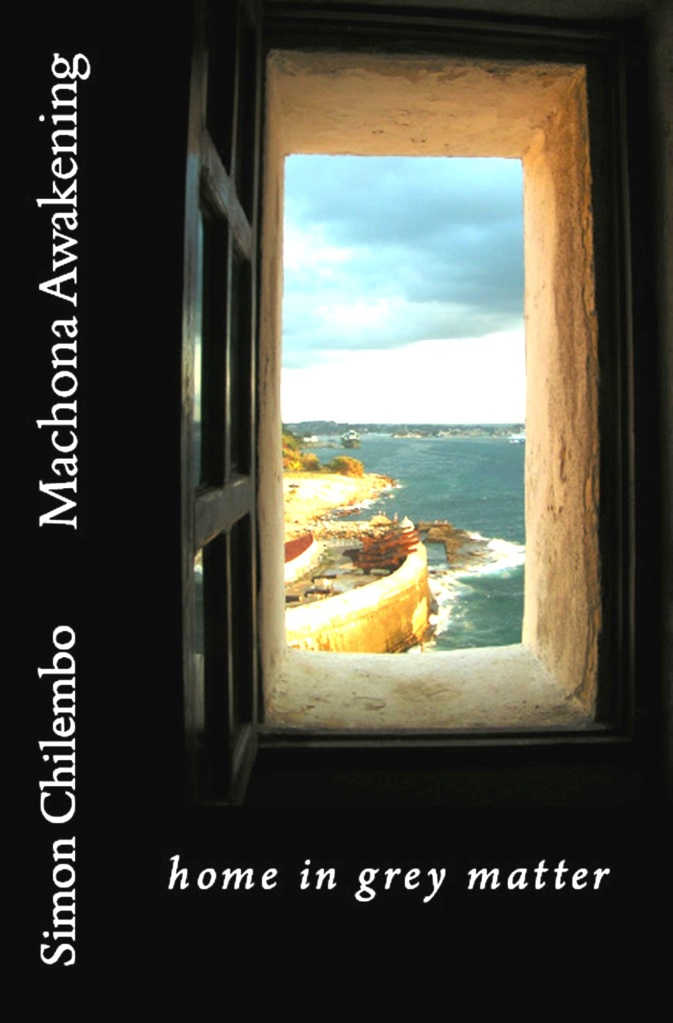 This image has an empty alt attribute; its file name is machona-awakening-book-cover1fb.jpg
